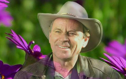 Gardener Craig Allison - The Carefree Gardener